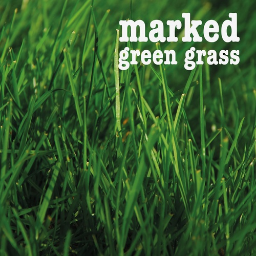 Green Grass - marked cover art